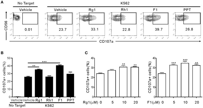Human NK cells kill resting but not activated microglia via NKG2D- and NKp46-mediated recognition