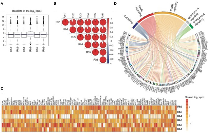 Delineation and Modulation of the Natural Killer Cell Transcriptome in Rhesus Macaques During ZIKV and SIV Infections.